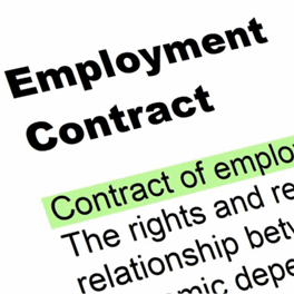 Employment Contracts - Article Image